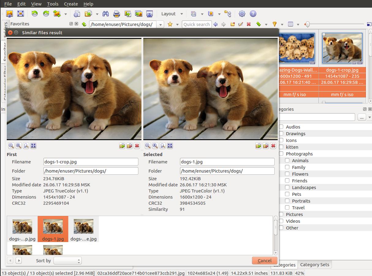 Screenshot for xnviewmp