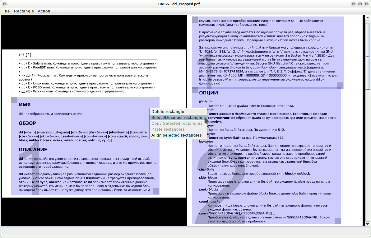 Screenshot for briss