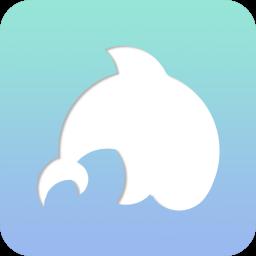 whalebird snap