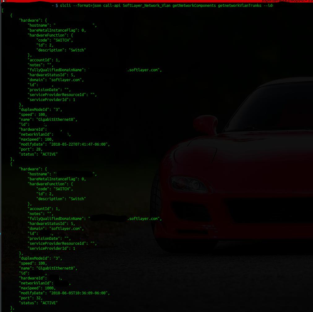 Screenshot for slcli